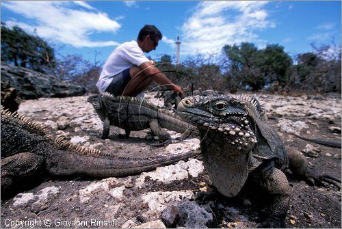 Cayo Piedra, Si primera vez, fotos desde tierra. Cuba_canarreos0087